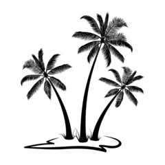 Palm trees silhouette with land isolated on white