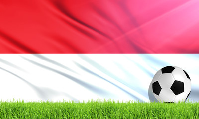 The National Flag of Indonesia