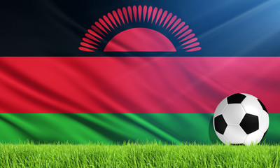 The National Flag of Malawi