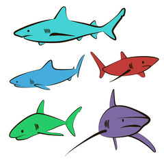 5 color icons sharks