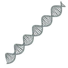 cartoon image of DNA model