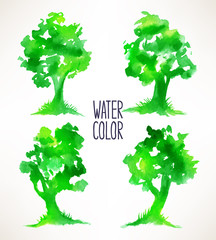 four watercolor trees
