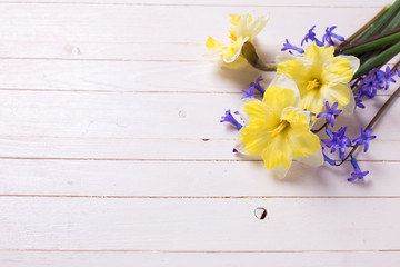 Fresh yellow and blue flowers on white wooden background