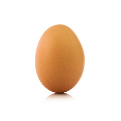 Single chicken egg
