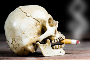 Human skull smoking a cigarette on a black background.