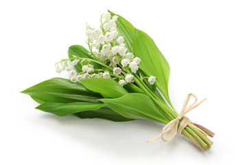 Fotorolgordijn Lelietje van dalen lily of the valley posy isolated on white background