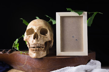 skull and photo frame with green leaf on old wood musical instru