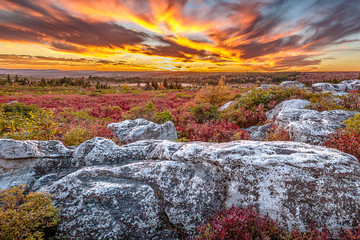 Dolly Sods Sunset in West Virginia