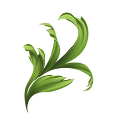 creative painted foliage, illustration of green grass and leaves isolated on white background