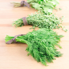 Bunches of fresh dill,  thyme, mint and parsley on a light woode