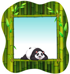 Bamboo frame and panda