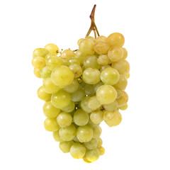 Bunch of ripe grapes