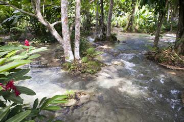 Dunn's river - Jamaica