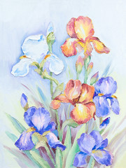 Oil painting - a bouquet of irises on an abstract background, beautiful flowers