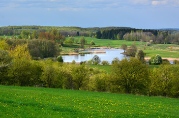 Spring landscape with lake