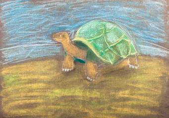 children drawing - turtle by dry pastel