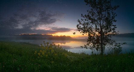 Evening panorama of a river with trees and flowers