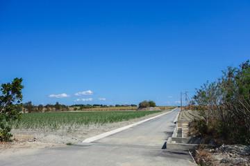 沖縄県 波照間島の風景
