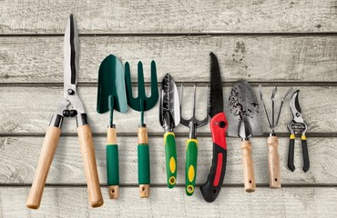 Gardening Equipment, Gardening, Work Tool.