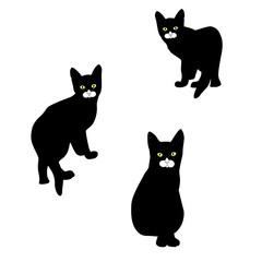 Black little kittens on a white background