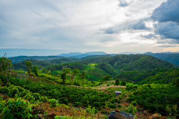 Landscape.The mountains and hills.Summer. Vietnam,Dalat.