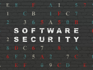 Security concept: Software Security on wall background