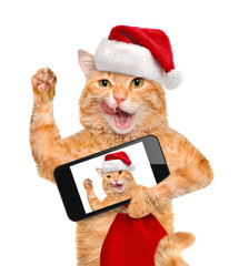 Cat  in red Christmas hat taking a selfie together with a smartphone.