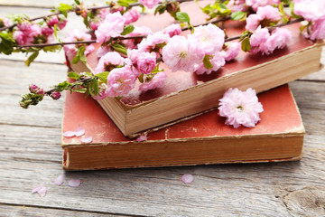 Spring flowering branch with old books on grey wooden background
