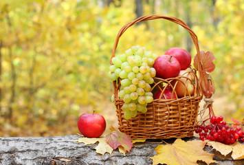Fresh fruit apples maple autumn harvest