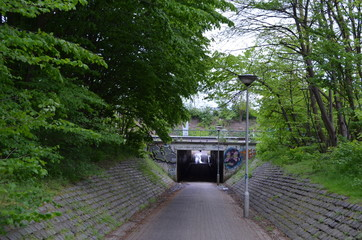 Bicycle path through tunnel in forest