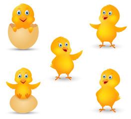 Happy chicks cartoon collection