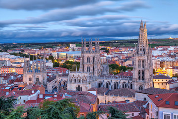 Foto op Plexiglas Lavendel View on Burgos Cathedral from the hill