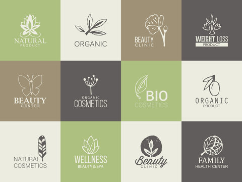 Natural, organic and beauty logo template with hand drawing icon