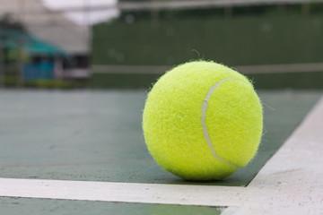 The tennis ball