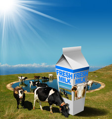 Cows Grazing with Milk Beverage Carton