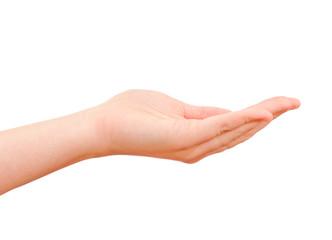 Open hand isolated