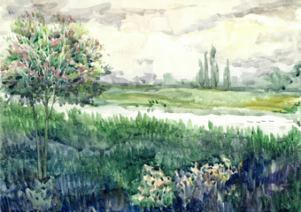 Watercolor landscape. Young tree in a meadow near river