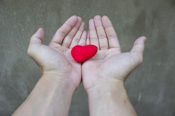 love,Heart in Hand