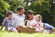 Family Enjoying Summer Picnic In Countryside