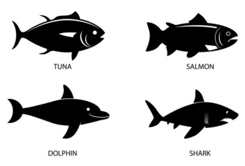 Various fish animal vector image