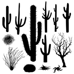 vector set of Silhouettes of cacti and other desert plants