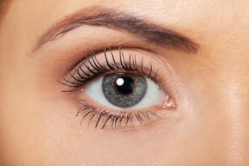 Eyebrow, closeup, eyelash.