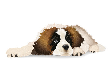 Cute puppy lying sad. The breed St. Bernard or Moscow watchdog. Isolated vector illustration.