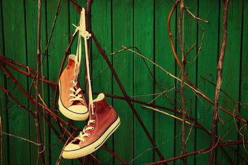 Old red sneakers against a green old wooden surface.