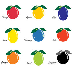 Various fruits icons, vector illustration