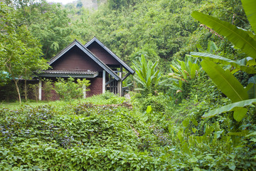 a wood cottage style house located in the Thai tropical rainforest rural scene