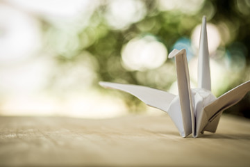 Origami crane, paper bird and bokeh background. shallow deep of