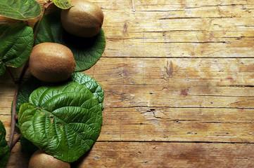 Kiwi Kiwifruit Chinese gooseberry Kivi Kiwifrucht Киви Quiuí