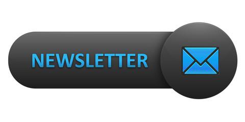 NEWSLETTER Vector Web Button