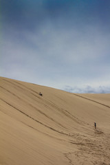 Sand Dunes in Sydney Australia